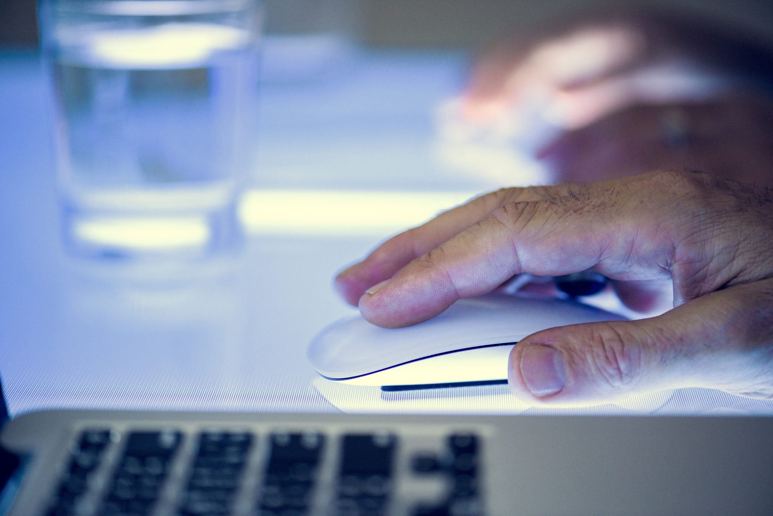 Click Fraud Prevention Google Ads