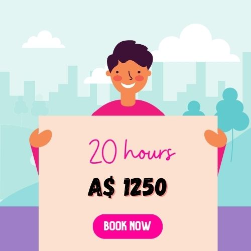 website support services 20 hours